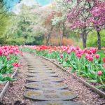 Pomysły na ogród: jak zrobić skalniak, jak zrobić ścieżkę w ogrodzie?